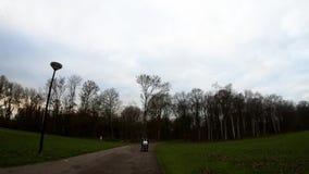 Fietsreis in park stock videobeelden