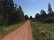 Fietsweg de Zuid- van Dakota Royalty-vrije Stock Foto