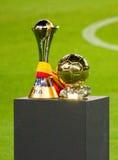 FIFA бьет кубок мира Стоковые Изображения RF
