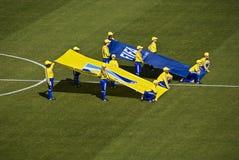 FIFA-Fahne - Meldung - FIFA-WC 2010 Stockfotografie