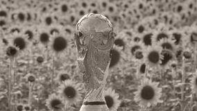 FIFA World cup trophy. World cup trophy photographed above a sunflower field stock footage