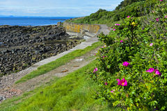 Fife Coastal Path near Crail Stock Photos