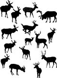 Fifteen deer silhouettes Stock Photos