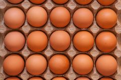 Fifteen whole unbroken brown eggs in a cardboard box. Photographed from above Royalty Free Stock Photography