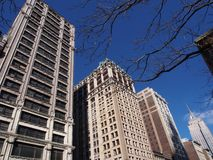 Fifth Avenue, Nowy Jork obraz stock