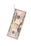 Fifty dollar bill. Stock Photography
