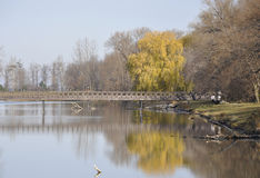 Fifty Point Conservation area, footbridge Royalty Free Stock Photography