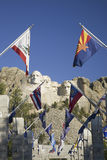 Fifty State flags lining the walkway to Grand Terrace Royalty Free Stock Photography