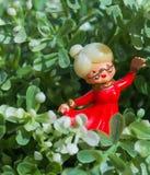 Figürchen des alten Kindermädchens Grandma Inside Plant Lizenzfreies Stockbild