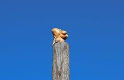 Figürcheneichhörnchen mit einer Nuss von einem Baum auf einem Baumstumpf auf einem Hintergrund des blauen Himmels Zahlen von den  Stockfoto