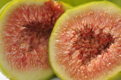 Free Fig Stock Images - 12708504
