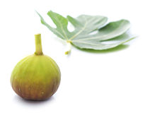 Fig And Fig Leaf Royalty Free Stock Photo
