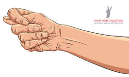 Fig fico hand sign, detailed vector illustration. Royalty Free Stock Images