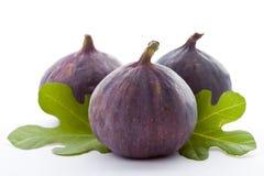 Fig. fraîche mûre. Photographie stock libre de droits
