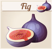 Fig fruit. Cartoon vector icon. Series of food and drink and ingredients for cooking Stock Photography
