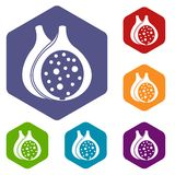 Fig fruit icons set hexagon. Isolated vector illustration Royalty Free Stock Photos