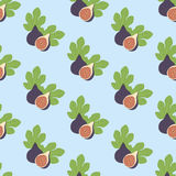 Fig Fruit pattern. On the blue background. Vector illustration Royalty Free Stock Images