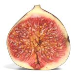 Fig Fruit. Realistic 3D Render of Fig Fruit Royalty Free Stock Photos