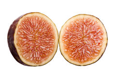 Fig Fruit Secion Stock Photography