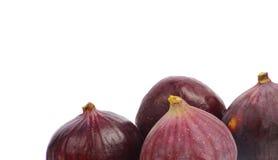 Fig fruits. Isolated on white background Stock Images
