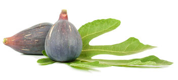 Fig fruits. Fresh purple fig fruits and leaf isolated on white background Stock Image