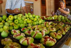 Fig fruits traditional preparation table. Fig fruits are prepared before dry to the sun in a specialised fig tree farm financed with investigation funds to Royalty Free Stock Photography