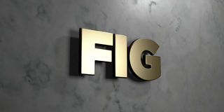 Fig - Gold sign mounted on glossy marble wall  - 3D rendered royalty free stock illustration Stock Image