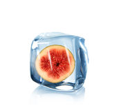 Fig in Ice cube Royalty Free Stock Photo