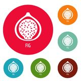 Fig icons circle set vector. Isolated on white background Royalty Free Stock Photography