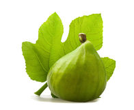 Fig with leaf Stock Image