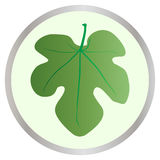 Fig Leaf Button. A fig leaf of the type worn by Adam and Eve in the Garden of Eden Stock Image