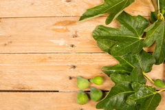 Fig leaves and fruit Royalty Free Stock Photo