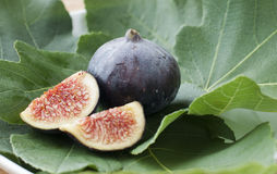 Fig. An organic variant of the common fig (Ficus carica Royalty Free Stock Photos