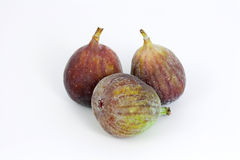 Fig owoc Fotografia Stock