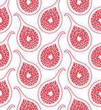 Fig. Pattern Stock Image