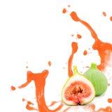 Fig splash Stock Images