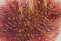 Fig texture Royalty Free Stock Photo