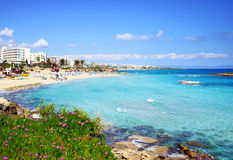 Fig Tree Bay in Cyprus. The Most beautiful bay in Cyprus Stock Photos