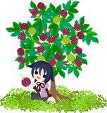 Fig Tree Stock Image