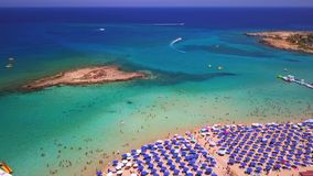 Fig tree Protaras aerial view 4k stock footage