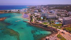 Fig tree Protaras aerial view 4k stock video