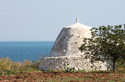 Fig tree and typical shed along the Adriatic, Italy Stock Photography