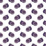Fig. Vector decorative seamless pattern. On a white background Royalty Free Stock Images