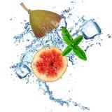 Fig in water splash Stock Image