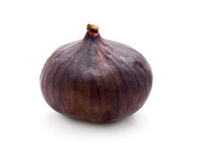 Fig on White Background Stock Photography