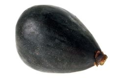A fig on a white background stock image