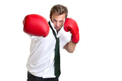 Fight Royalty Free Stock Photo