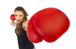 Fight! Stock Photography