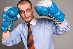 Fight Stock Photography