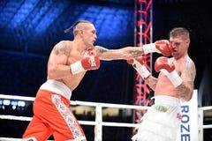 Fight for champions belt. Lviv, UKRAINE -October 4, 2014 :  Oleksandr Usyk (Ukraine) and South African Daniel Bruwer in the ring during fight for WBO Inter stock image